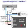ECT-2 for Civics